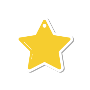 Payment Star Key Fob