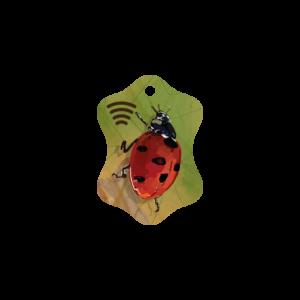 Petite Ladybug Key Fob
